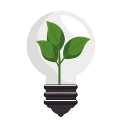 Plant with bulb isolated icon vector