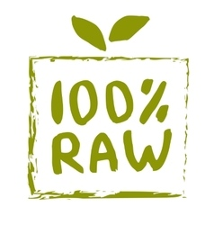 Raw food hand drawn isolated label vector image