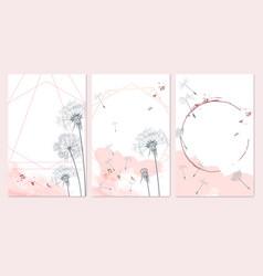 Set templates in minimalist feminine style vector