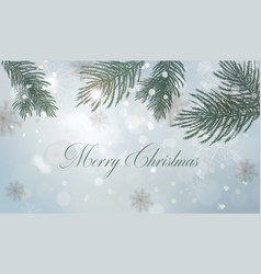 winter background with fir tree branch decorations vector image