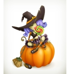 Witch on pumpkin vector image