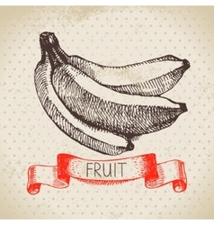 Hand drawn sketch fruit banana Eco food vector image