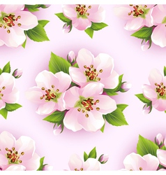 Floral seamless pattern with sakura blossom vector