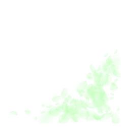 Green flower petals falling down enchanting roman vector