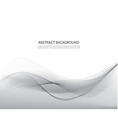 Grey abstract waves background vector