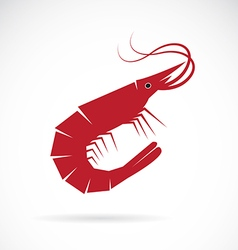 image an shrimp design vector image