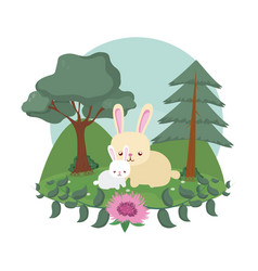 Rabbits cute animals cartoons vector