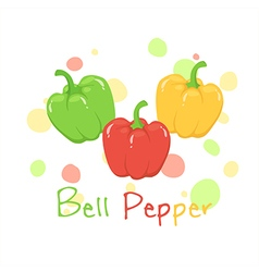 Vegetable Bell Pepper Red Green Yellow vector image