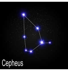 Cepheus Constellation with Beautiful Bright Stars vector image vector image