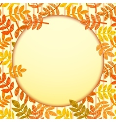 Autumn leaves and a round frame background vector image