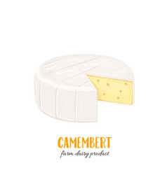 Camembert cheese icon vector