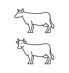 cow icons on white background line style vector image