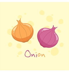 Onion and Red Onion Vegetable vector