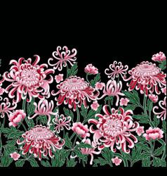 set botanical flowers chrysanthemum vector image