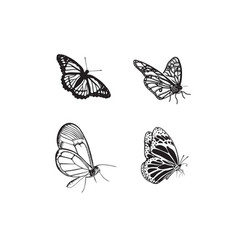 set butterfly hand drawn vector image
