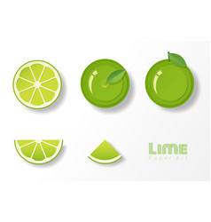 set of limes in paper art style vector image