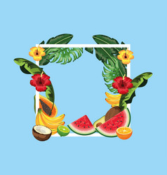 Square frame with flowers and tropical fruits vector