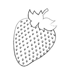 Strawberry fresh fruit icon vector