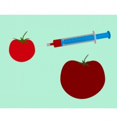Tomato and science vector