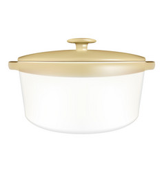 white saucepan with a lid isolated on a white vector image