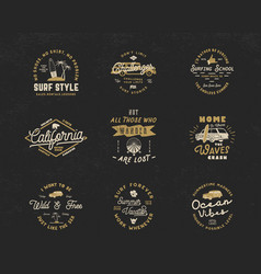 Vintage surfing graphics and emblems set for web vector