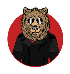 bear portrait vector image