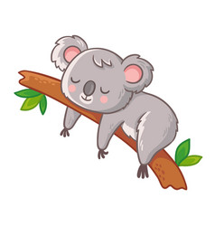 cute koala is sleeping on a tree vector image
