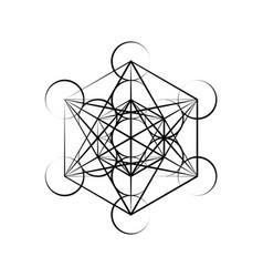 Hexagon outline silhouette vector