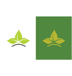 leaf orrganic logo vector image