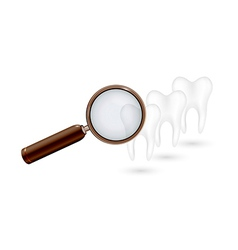 magnifying glass and white teeth vector image