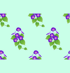 Purple morning glory seamless on green mint vector