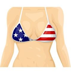 USA flag bikini vector image