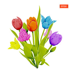bouquet of multicolored tulips in watercolor style vector image