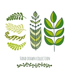 Ethnic green doodle leaves for spring or summer vector image