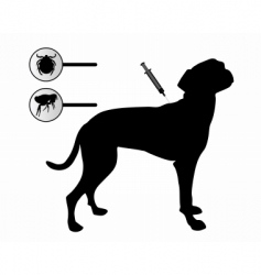 fleas and tics vector image