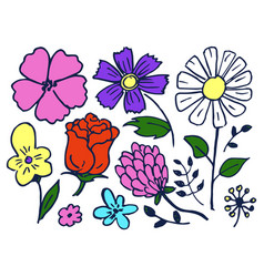flowers hand drawn element set vector image
