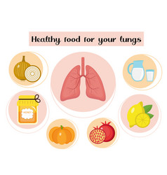Healthy food for your lungs concept food vector