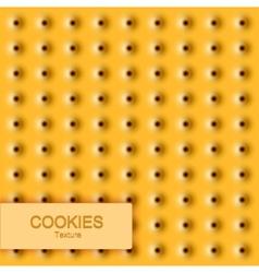 Modern cookie texture food background vector