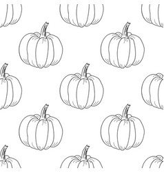 Pumpkin pattern contour graphic on white vector