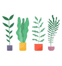 set lush foliage succulent plants office decor vector image