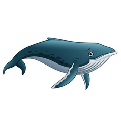 sperm whale cartoon vector image