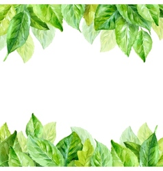 spring leaves watercolor vector image