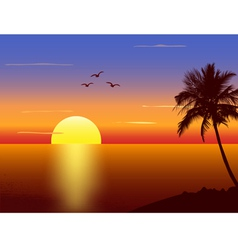 Sunset with palmtree silhouette vector image vector image