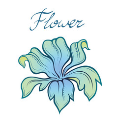 decorative color summer flower linear vector image vector image