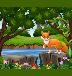 a fox cartoon playing in park vector image