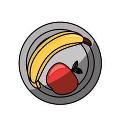 banana and apple vector image