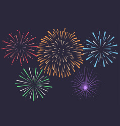 Firework on night background anniversary vector