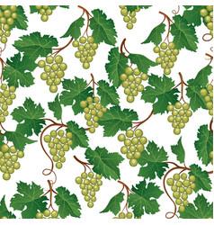 Grape seamless pattern wine yard natural fruit vector