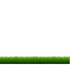 Green grass frame isolated white background vector