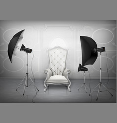 photo studio with armchair and softboxes vector image